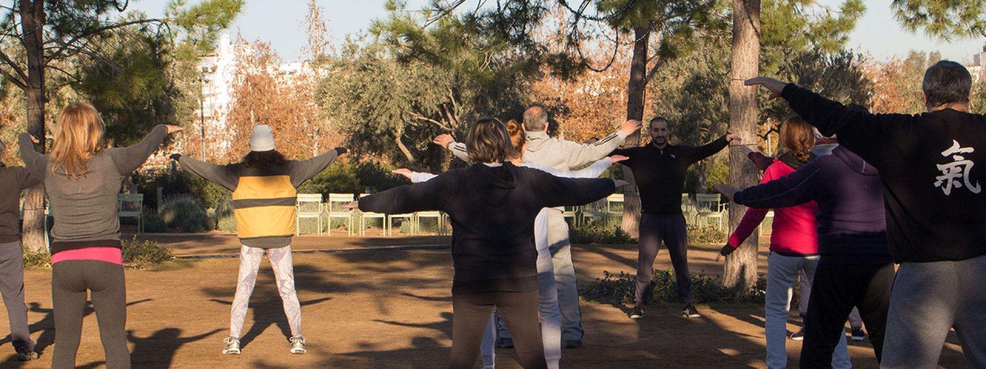 Φωτογραφία από μάθημα Tai Chi στο Πάρκο Σταύρος Νιάρχος