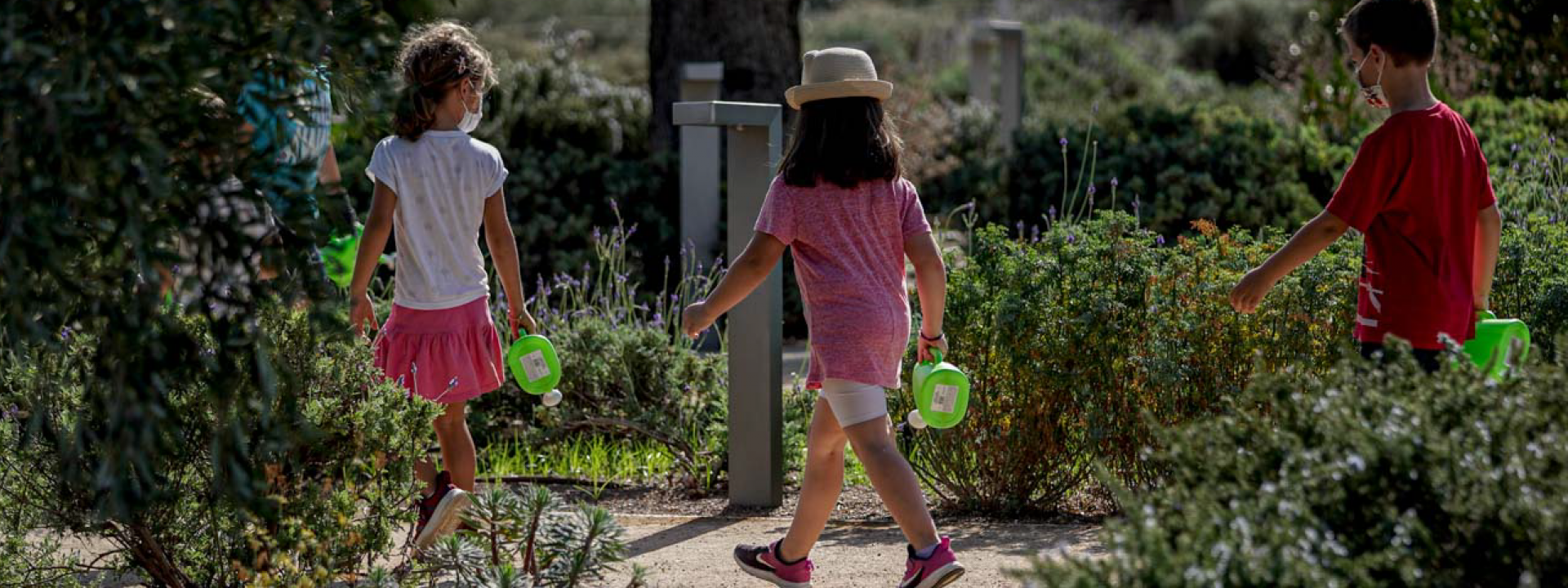 Cancellation: Little Gardeners of the Park: A sustainable garden - Εικόνα