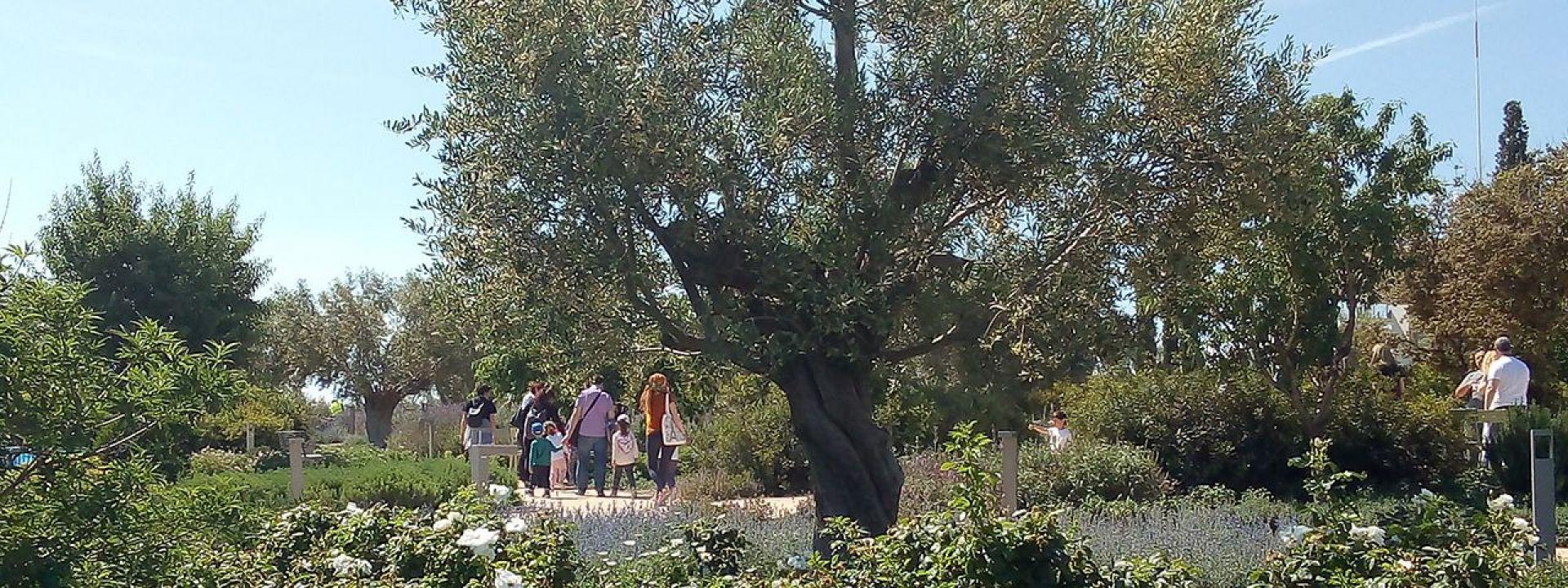 Φωτογραφία από το Πάρκο Σταύρος Νιάρχος