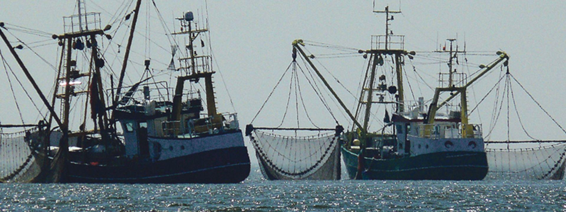 Φωτογραφία που απεικονίζει αλιευτικά πλοία
