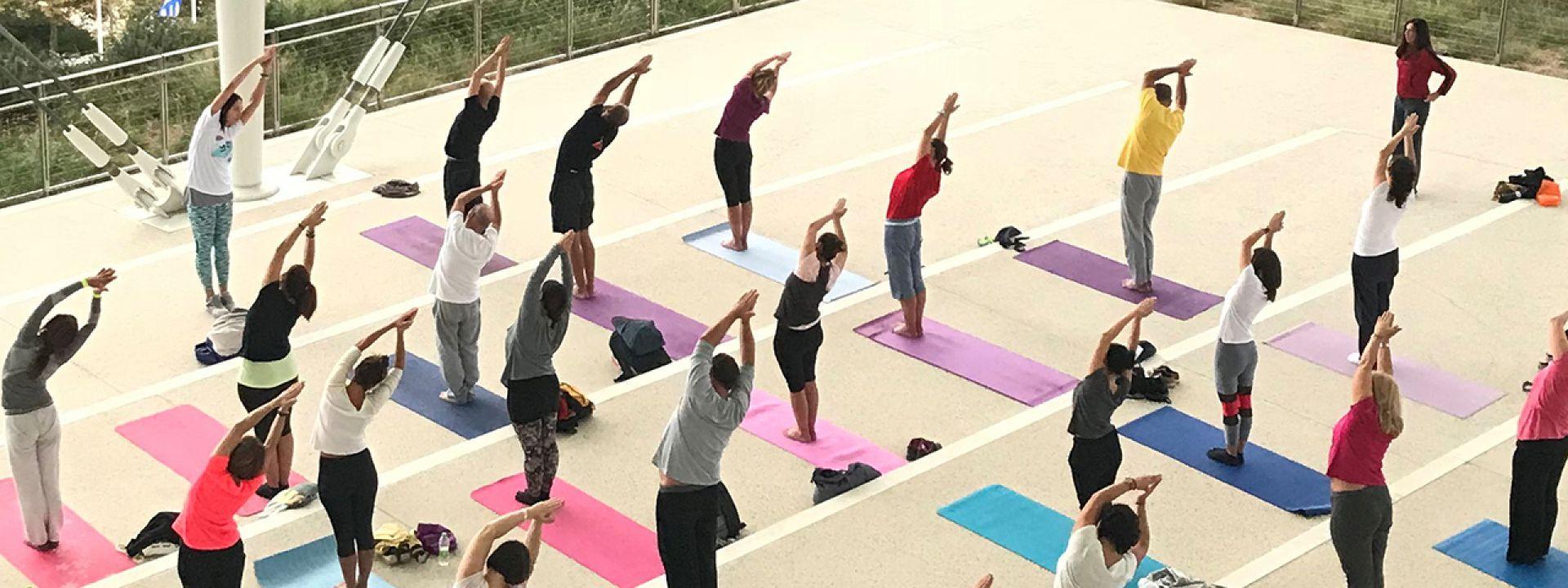 Φωτογραφία από μάθημα yoga στα Πανοραμικά Σκαλιά του ΚΠΙΣΝ