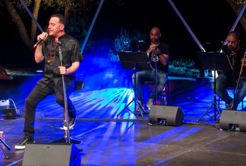 Προβολή της μαγνητοσκοπημένης συναυλίας του Vassilikos στο Πάρκο Σταύρος Νιάρχος - Εικόνα