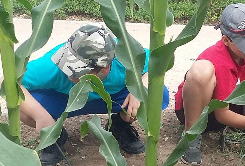 Φωτογραφία από παιδιά που εξοικειώνονται με τα φυτά του Πάρκου Σταύρος Νιάρχος