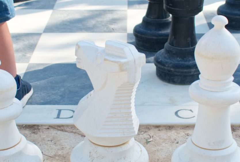 Cancellation: An introduction to chess - Εικόνα