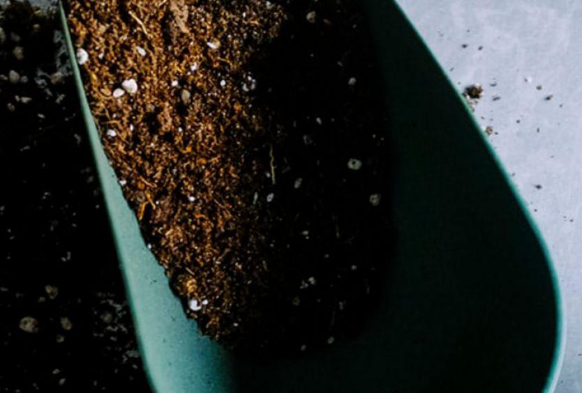 Φωτογραφία που αποτυπώνει την επαφή του ανθρώπου με τη γη και το χώμα