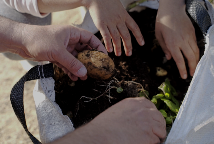 The Park's gardeners: Learning to propagate our plants| SNFCC - Εικόνα
